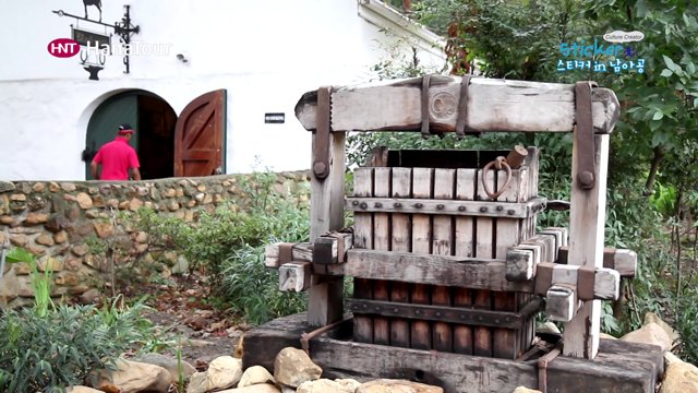 [남아공] 신선한 와인이 있는 케이프 와인 랜드