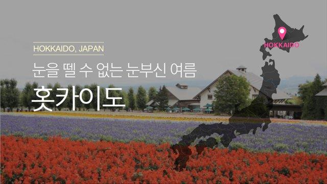 [일본] 삿포로 눈부신 여름의 홋카이도