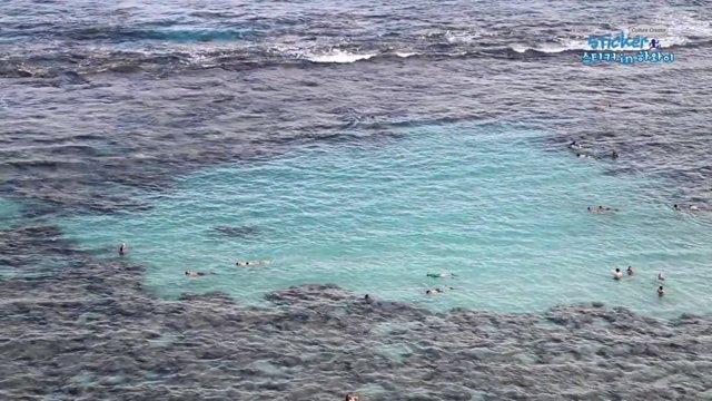 [미국] 하와이 하나우마베이 스노클링