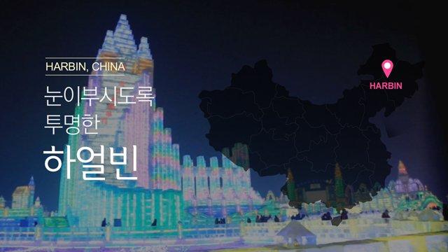 [중국] 눈이 부시도록 투명한 하얼빈