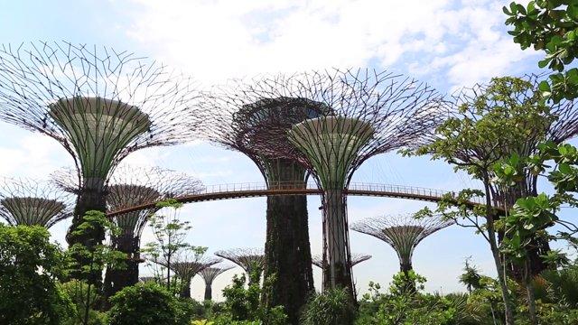 싱가포르 가든즈 바이 더 베이