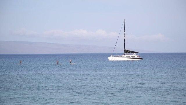하와이 바다