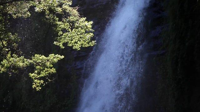 대만 타이중 삼림계 폭포