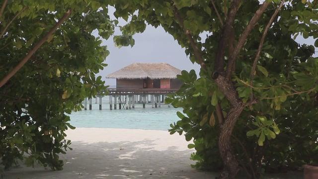 몰디브 리조트와 해변