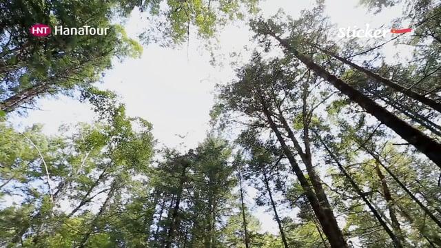 [중국] 백두산 서파 코스