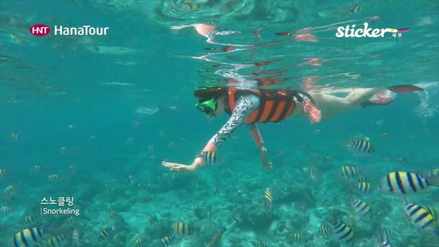 [세부] 세부 스노클링(CEBU Snorkeling)